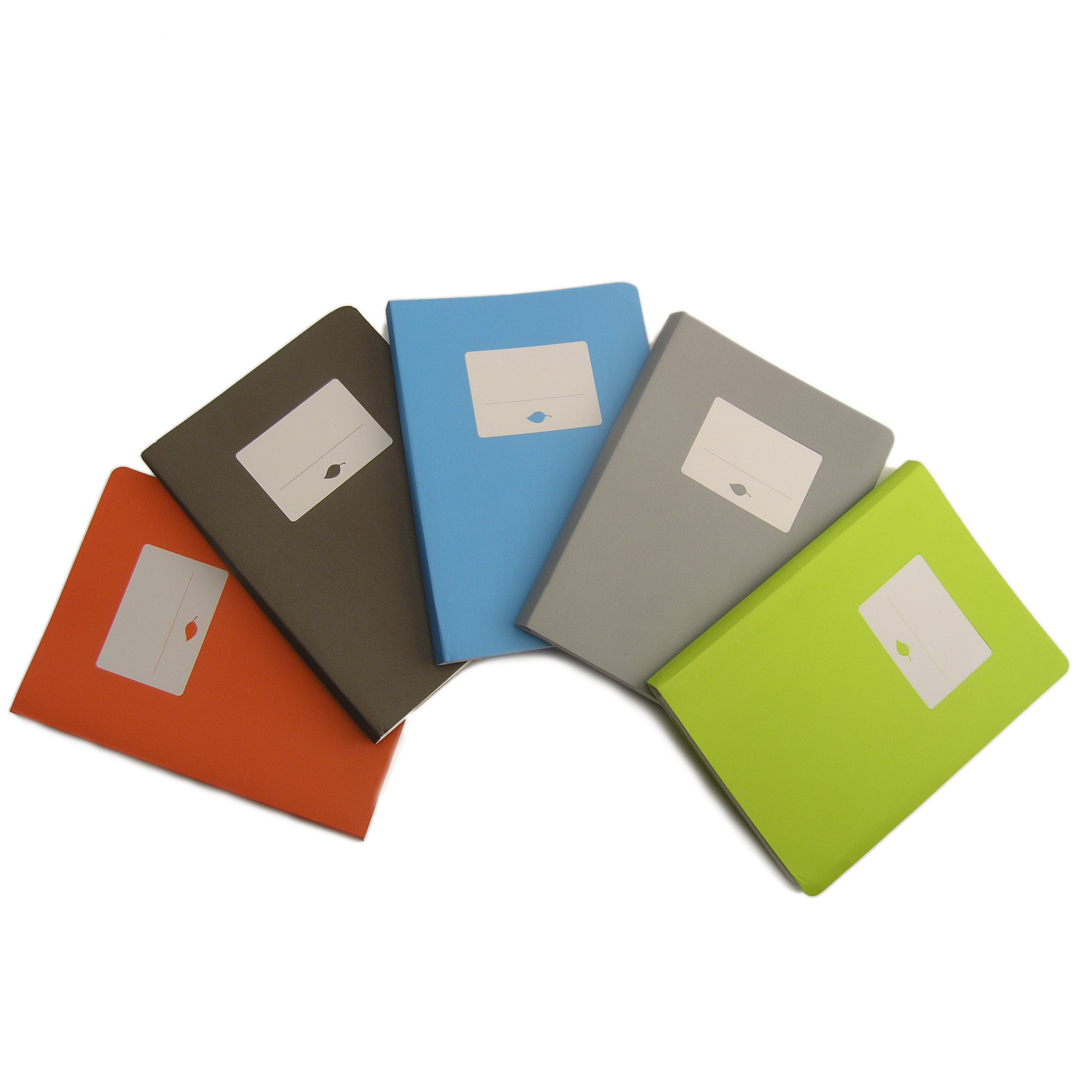 Terraskin notebooks